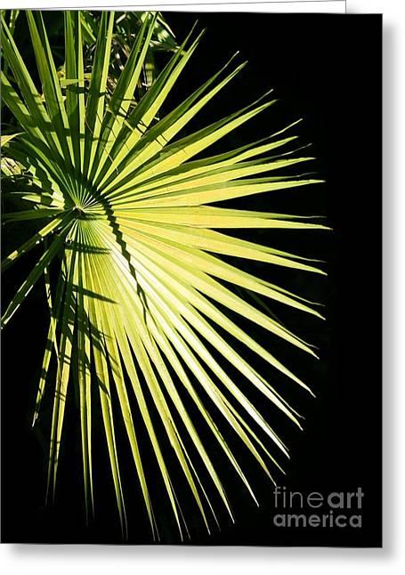 Rays Of Light Greeting Card by Sabrina L Ryan