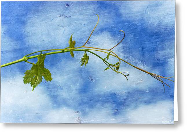 Blue Grapes Greeting Cards - Reaching Out Greeting Card by Heidi Smith