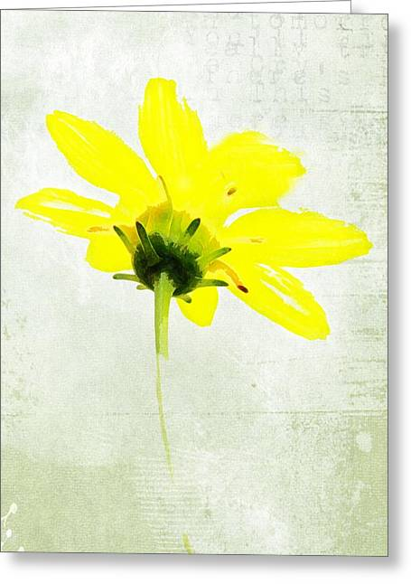 Texture Flower Greeting Cards - Ready For Spring Greeting Card by Kathy Jennings