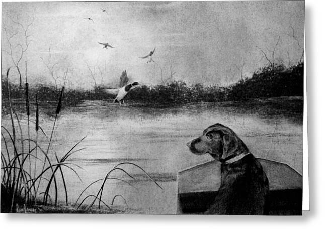 Swamp Drawings Greeting Cards - Ready to Fetch Greeting Card by Ron Landry