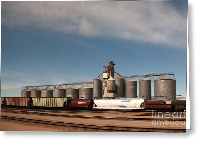 Freight Train Greeting Cards - Ready to Go Greeting Card by Noel Zia Lee