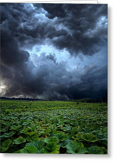 Summer Storm Photographs Greeting Cards - Reclusive Greeting Card by Phil Koch