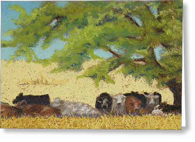 Cattle Pastels Greeting Cards - Record Temps Greeting Card by Tracy L Teeter