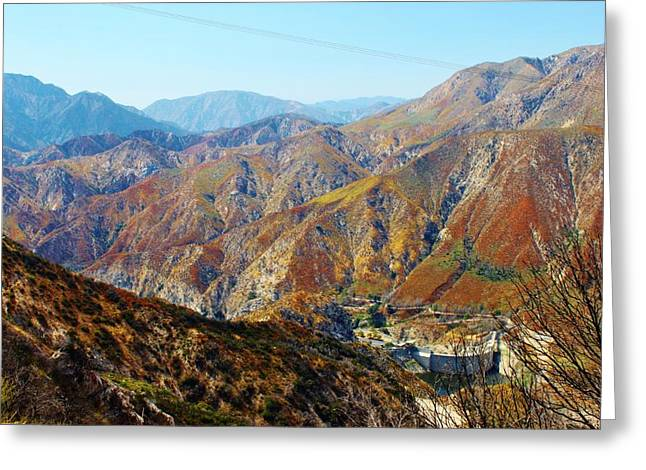 Angeles Forest Greeting Cards - Recovery Greeting Card by Caroline Lomeli