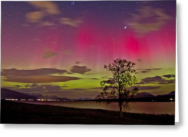 Photographing Aurora Greeting Cards - Red and Green Greeting Card by Frank Olsen