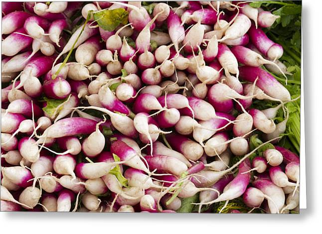 Red and White radishes Greeting Card by John Trax