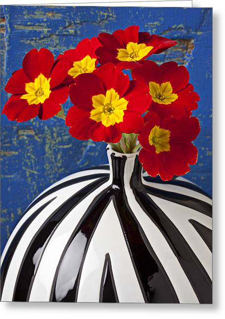 Vulgaris Greeting Cards - Red And Yellow Primrose Greeting Card by Garry Gay