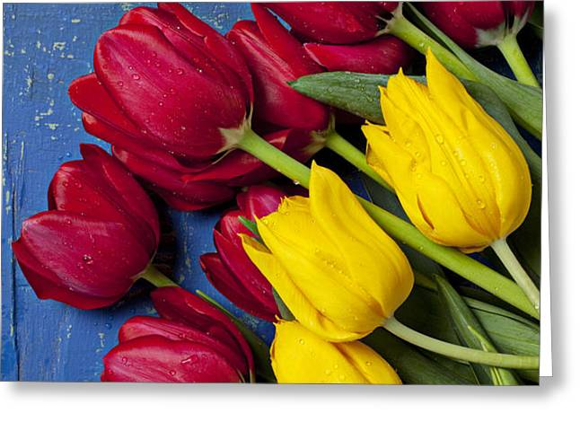 Red and yellow tulips Greeting Card by Garry Gay