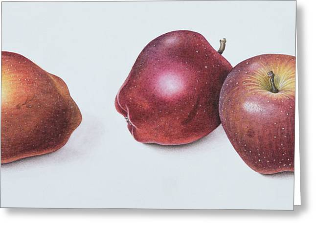 Apple Greeting Cards - Red Apples Greeting Card by Margaret Ann Eden