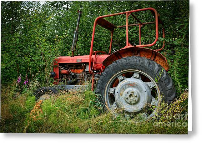 Red Tractors Greeting Cards - Red Beauty Greeting Card by Lutz Baar