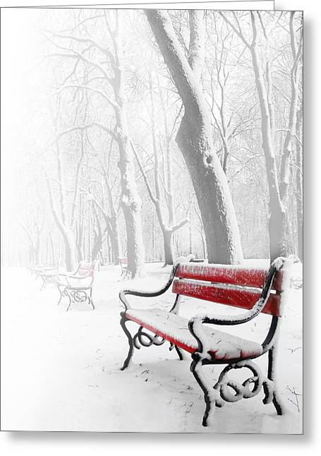 Snowy Tree Greeting Cards - Red bench in the snow Greeting Card by  Jaroslaw Grudzinski