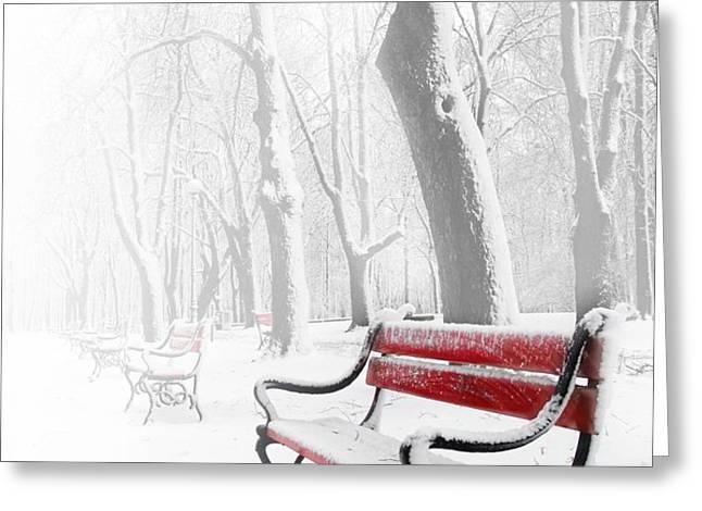 Red bench in the snow Greeting Card by  Jaroslaw Grudzinski