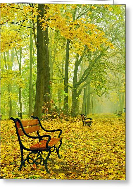 Garden Scene Digital Art Greeting Cards - Red benches in the park Greeting Card by Jaroslaw Grudzinski