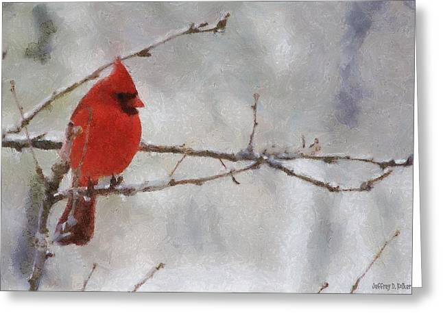 Gray Bird Greeting Cards - Red Bird of Winter Greeting Card by Jeff Kolker