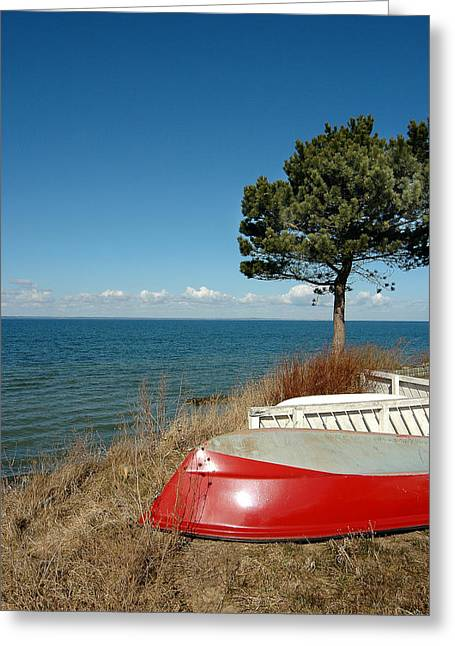 Fyn Greeting Cards - Red Boat Blue Sky Greeting Card by Robert Lacy