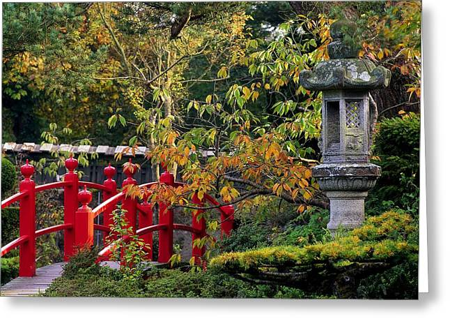 Statuary Garden Greeting Cards - Red Bridge & Japanese Lantern, Autumn Greeting Card by The Irish Image Collection