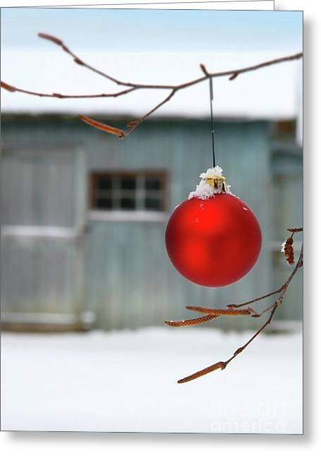 Glass Ball Greeting Cards - Red christmas ball Greeting Card by Sandra Cunningham