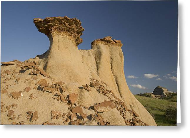 Red Clay Greeting Cards - Red Clay Is Exposed By Erosion Greeting Card by Phil Schermeister