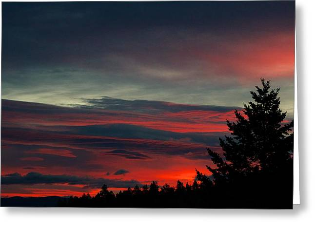 Sunset Posters Greeting Cards - Red Dawn  Greeting Card by Kevin Bone