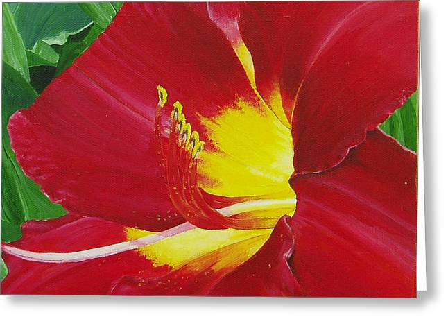 Thomas Faires Greeting Cards - Red Daylily Greeting Card by Thomas Faires