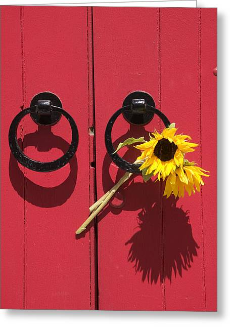 Red Doors Greeting Cards - Red door sunflowers Greeting Card by Garry Gay