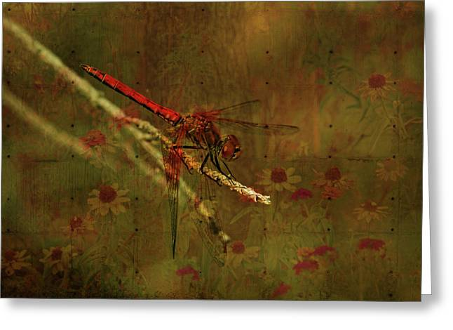 Olive Green Greeting Cards - Red Dragonfly Dining Greeting Card by Bonnie Bruno