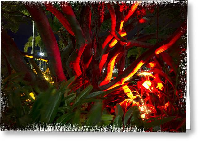 Entanglement Greeting Cards - Red Entanglement Greeting Card by Douglas Barnard