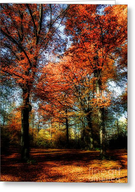 Hannes Cmarits Greeting Cards - Red Fall Greeting Card by Hannes Cmarits