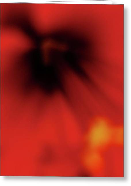 Photos With Red Greeting Cards - Red Flower II Greeting Card by Bruno Debas