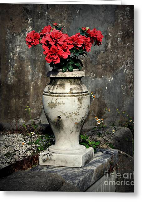 Old Vase Greeting Cards - Red Flowers In Vase Greeting Card by Perry Webster