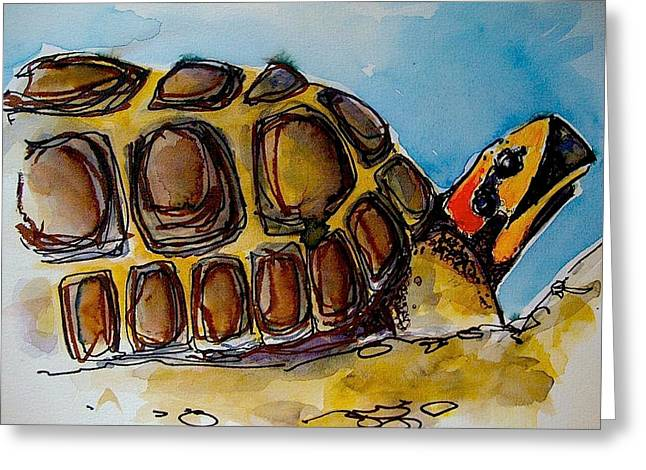 Red Foot Tortoise Greeting Card by Richard Greene