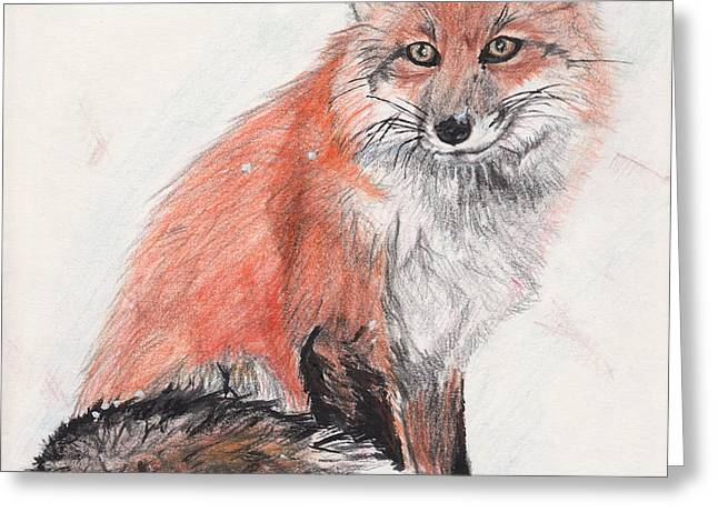 Red Fox in Snow Greeting Card by Marqueta Graham