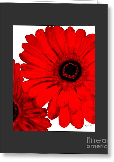 Wrapped Canvas Greeting Cards - Red Gerber Border     Digital Art  Greeting Card by Marsha Heiken