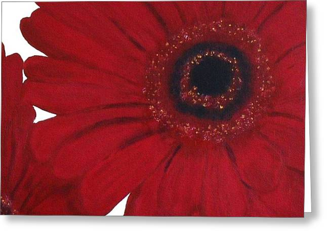 Red Gerber Daisy Greeting Card by Marsha Heiken
