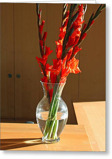 Red Glads Greeting Card by Suzanne Gaff