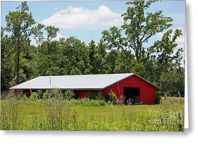 Red Buildings Greeting Cards - Red Horse Barn Greeting Card by Suzanne Gaff