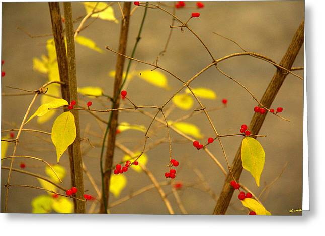 Indiana Autumn Greeting Cards - Red Hots Greeting Card by Ed Smith