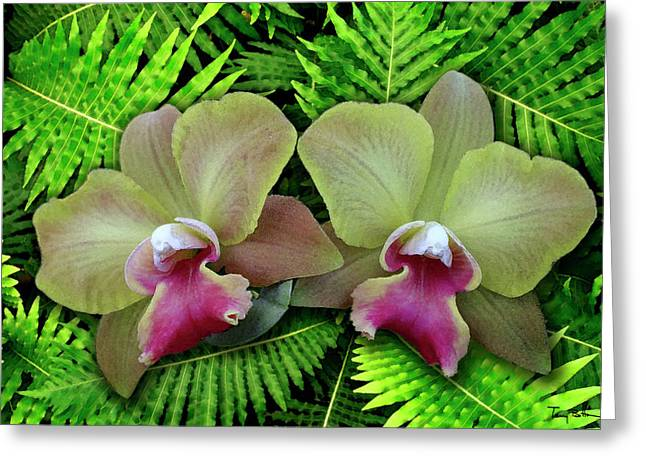 Cattleya Digital Art Greeting Cards - Red Lips on Ferns Greeting Card by Terry Bottom