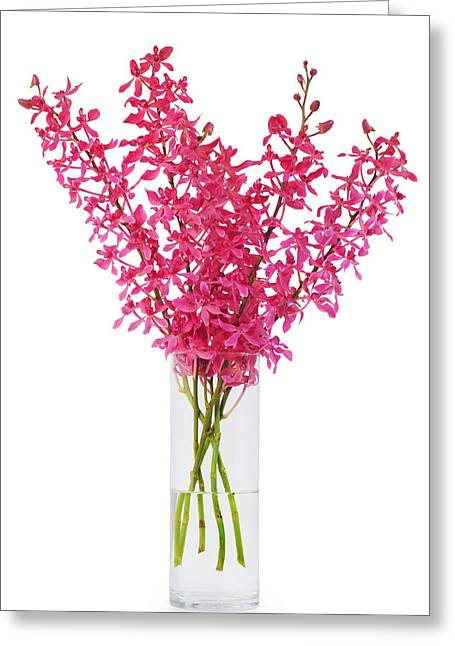 Reflex Greeting Cards - Red Orchid In Vase Greeting Card by Atiketta Sangasaeng