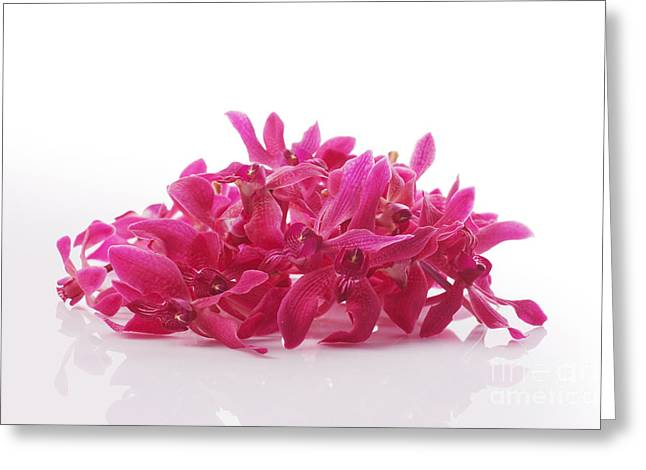 Spa-treatment Greeting Cards - Red Orchid Pile Greeting Card by Atiketta Sangasaeng