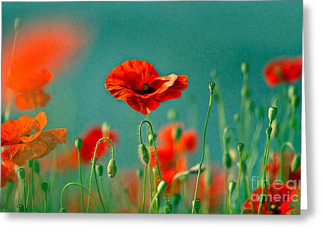 Blossoming Greeting Cards - Red Poppy Flowers 06 Greeting Card by Nailia Schwarz