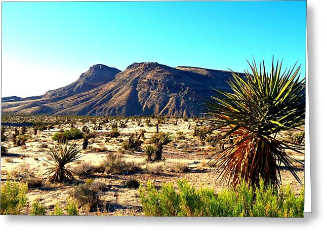 Desert Greeting Cards - Red Rock Canyon 10 Greeting Card by Randall Weidner