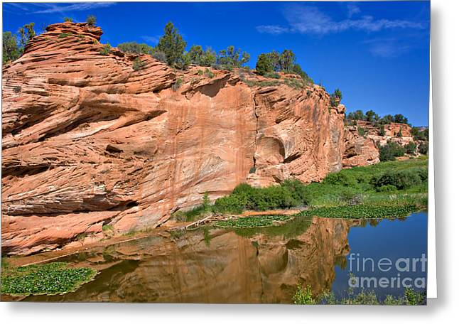Red Rock Formation In The Kaibab Plateau In Grand Canyon National Park Greeting Card by Louise Heusinkveld