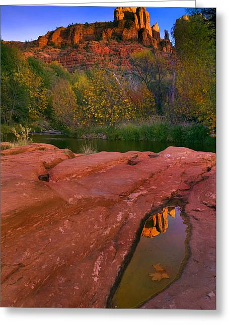 Puddle Greeting Cards - Red Rock Reflection Greeting Card by Mike  Dawson