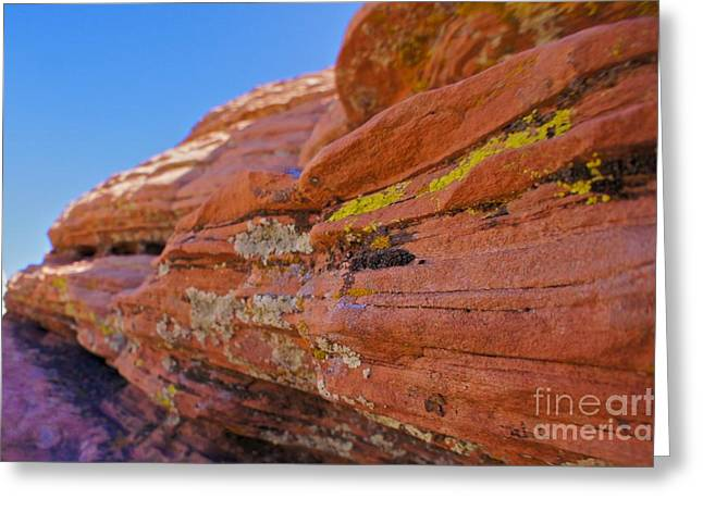 Will Cardoso Greeting Cards - Red Rock Greeting Card by Will Cardoso