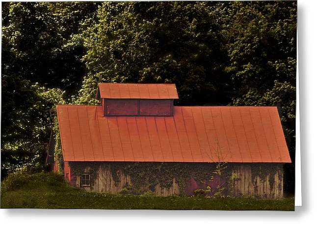 Tin Roof Greeting Cards - Red Roof Greeting Card by Odd Jeppesen