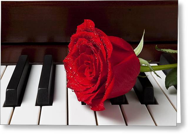 Keyboard Photographs Greeting Cards - Red rose on piano Greeting Card by Garry Gay