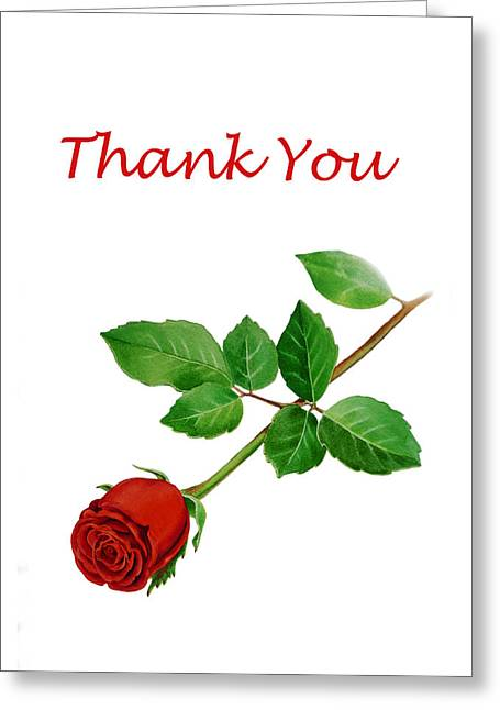 Noble Greeting Cards - Red Rose Thank You Card Greeting Card by Irina Sztukowski