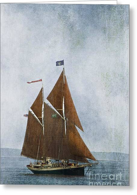 Schooner Greeting Cards - Red Sails Greeting Card by Alana Ranney
