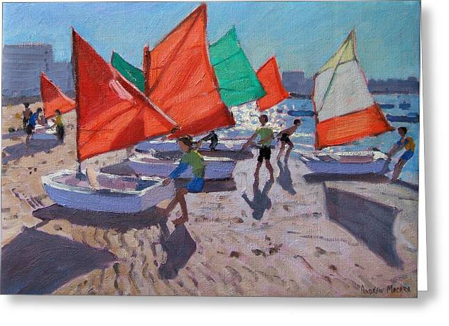 Sunfish Greeting Cards - Red Sails Greeting Card by Andrew Macara